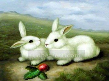 dw005hD animal rabbit Oil Paintings