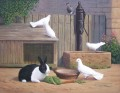 rabbit and pigeons