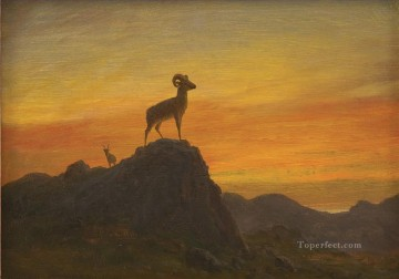 Animal Painting - ROCKY MOUNTAIN SHEEP American Albert Bierstadt animal