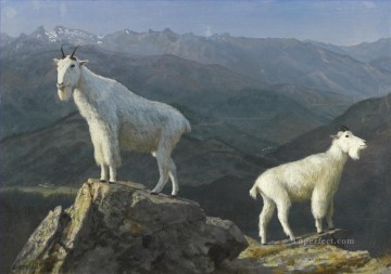 Artworks in 150 Subjects Painting - MOUNTAIN GOATS American Albert Bierstadt animal
