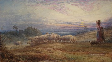 Animal Painting - Shepherd sunset