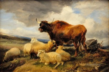 cattle and sheep on meadow Oil Paintings
