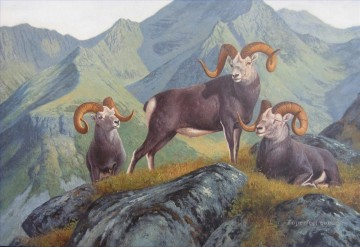 Animal Painting - goat in mountain