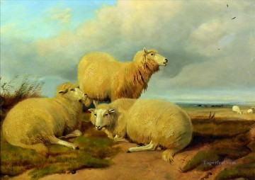 sheep on meadow Oil Paintings