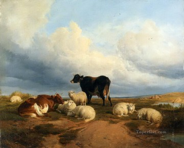 Canterbury Meadows cow sheep Oil Paintings