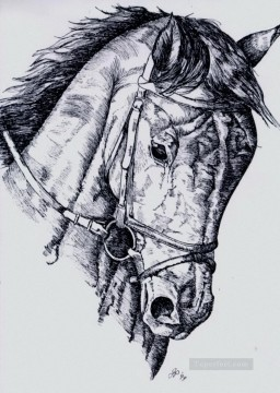 horse canvas - horse pencil sketch black and white