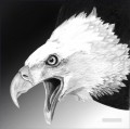 white eagle black and white