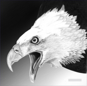 white eagle black and white Oil Paintings