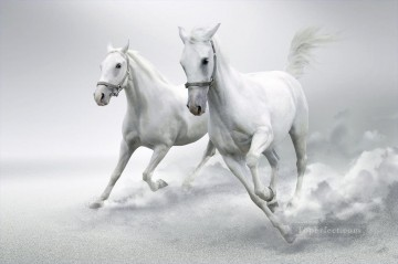 horse racing Painting - horses snow white running black and white