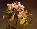 Apple Blossoms flower painter Martin Johnson Heade