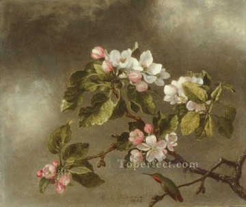 Classical Flowers Painting - Hummingbird And Apple Blossoms flower painter Martin Johnson Heade