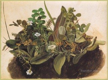 Classical Flowers Painting - The tuft of grass MINOR Albrecht Durer classical flowers