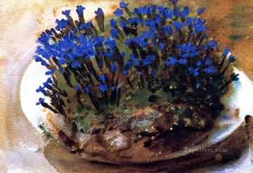 Blue Gentians John Singer Sargent Impressionism Flowers Oil Paintings