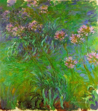 Agapanthus Claude Monet Impressionism Flowers Oil Paintings