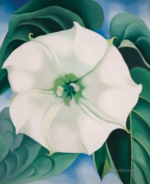 Jimson Weed White Flower No1 Georgia Okeeffe floral decoration Oil Paintings