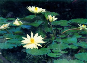 Photos Oil Painting - xsh0419b realistic from photos flowers