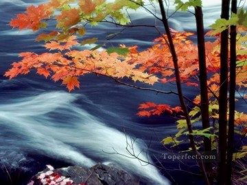 Red Maple Leaves River Painting from Photos to Art Oil Paintings