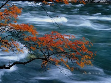 Time River Painting from Photos to Art Oil Paintings