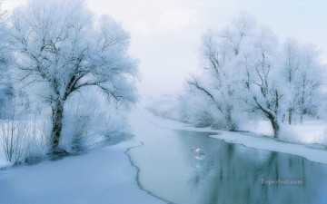realistic photography 07 winter landscape Oil Paintings