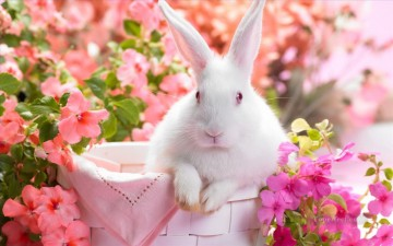 Springtime Bunny in Pink Flowers Painting from Photos to Art Oil Paintings