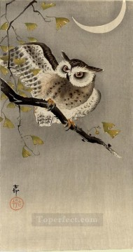 Japanese Painting - owl on ginkgo branch scops owl under crescent moon Ohara Koson Japanese