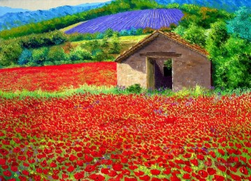 Poppy field garden Oil Paintings