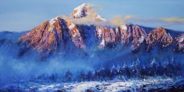mountain 11 Oil Paintings