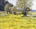Willows and Wildflowers impressionism landscape Theodore Robinson