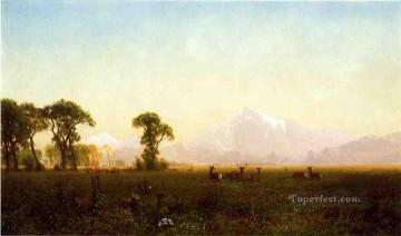 Deer Grazing Grand Tetons Wyoming Albert Bierstadt Oil Paintings