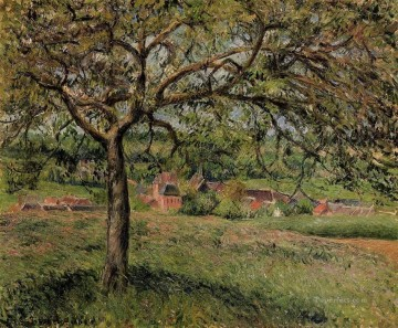 apple tree at eragny 1884 Camille Pissarro scenery Oil Paintings
