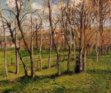 Meadow Art - meadow at bazincourt 1885 Camille Pissarro scenery
