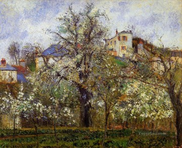 the vegetable garden with trees in blossom spring pontoise 1877 Camille Pissarro scenery Oil Paintings