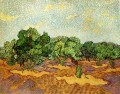 Olive Grove Pale Blue Sky Vincent van Gogh scenery