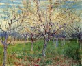 Orchard with Blossoming Apricot Trees Vincent van Gogh scenery