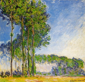 Poplars View from the Marsh Claude Monet woods forest Oil Paintings