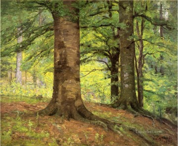 Beech Trees Impressionist Indiana landscapes Theodore Clement Steele woods forest Oil Paintings
