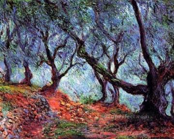 Grove of Olive Trees in Bordighera Claude Monet woods forest Oil Paintings