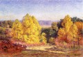 The Poplars Impressionist Indiana landscapes Theodore Clement Steele woods forest