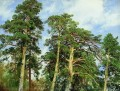 the tops of the pines classical landscape Ivan Ivanovich trees