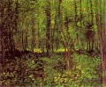 Trees and Undergrowth Vincent van Gogh woods forest