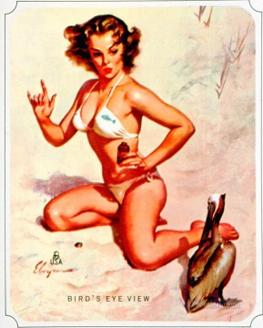 Pin up Painting - Elvgren Birds Eye View pin up