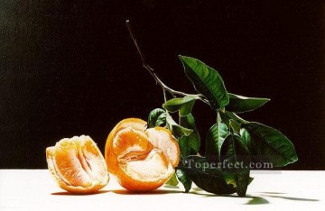 sl093B realism still life Oil Paintings