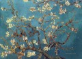 branch of an almond tree in blossom van gogh