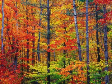 Textured Painting - Bright fall foliage autumn in New Hampshire