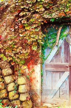 Garden door realistic original Oil Paintings