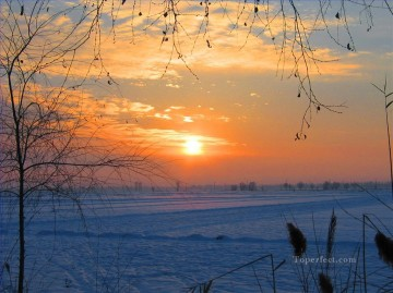 Original Realistic Painting - Sunset in south of China in winter realistic original