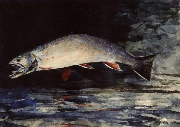 A Brook Trout Winslow Homer watercolor Oil Paintings