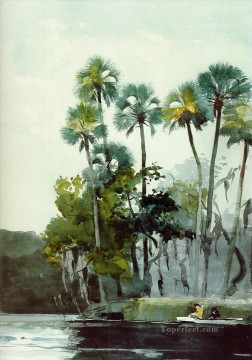 Homosassa River Winslow Homer watercolour Oil Paintings