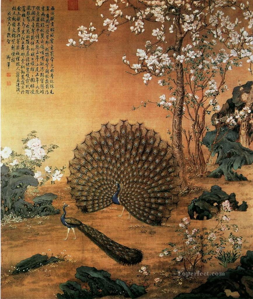 Lang shining Proudasa Peacock old Chinese Oil Paintings