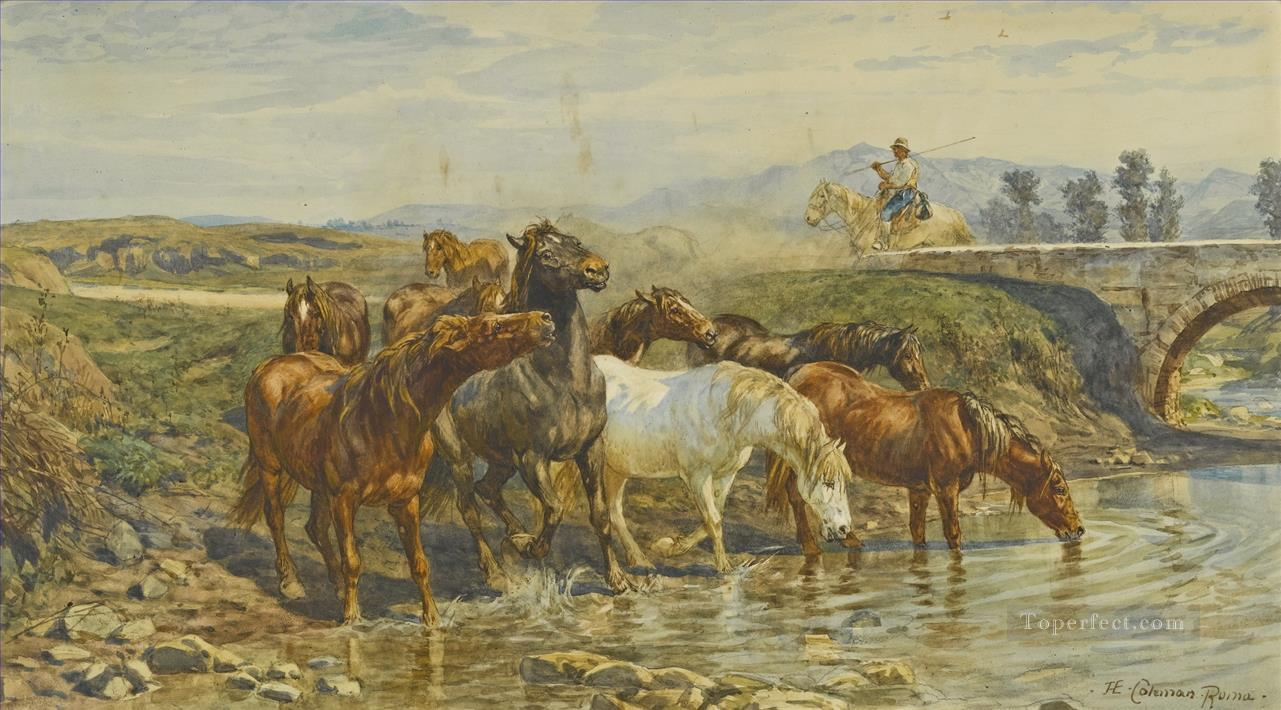 Horses drinking at a stream Enrico Coleman genre Oil Paintings